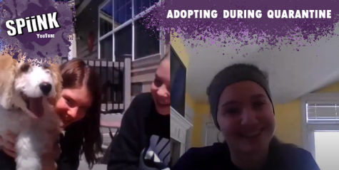 Adopting animals during quarantine— Interview with PSD students Lauren and Emily Johnson